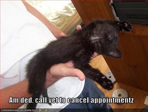 Am ded, call vet to cancel appointmentz