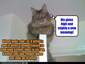 Kitteh logic rule #6: A kitteh's ego is directy proportionate to how high kittehs likes to sit/lay. Kittehs feel like royalty when you look up to them