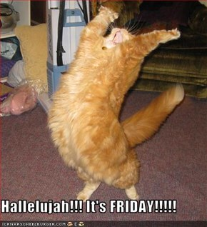 Hallelujah!!! It's FRIDAY!!!!!