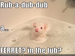 Rub-a-dub-dub a... FERRET? in the tub?