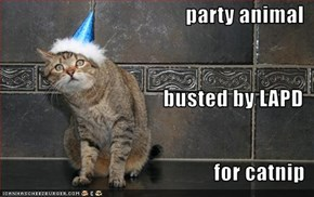 party animal busted by LAPD for catnip