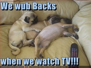 We wub Backs  when we watch TV!!!