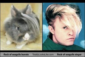 flock of seagulls bunnie Totally Looks Like flock of seagulls singer