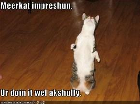 Meerkat impreshun.  Ur doin it wel akshully.