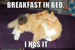 BREAKFAST IN BED.  I HAS IT