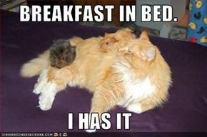 BREAKFAST IN BED.  I HAS IT