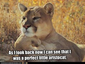 As I look back now I can see that I was a perfect little aristocat.