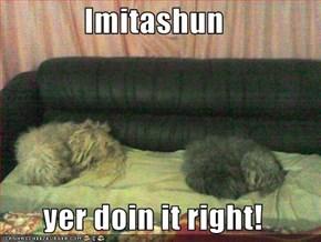 Imitashun  yer doin it right!