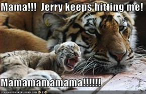 Mama!!!  Jerry keeps hitting me!  Mamamamamama!!!!!!
