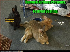 Bunweh Airlines Presents:  Festival Seating.