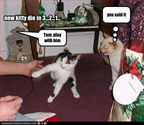 new kitty die in 3...2...1...