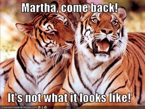 Martha, come back!  It's not what it looks like!