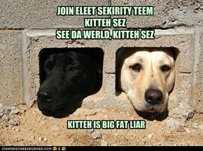 JOIN ELEET SEKIRITY TEEM KITTEH SEZ SEE DA WERLD, KITTEH SEZ