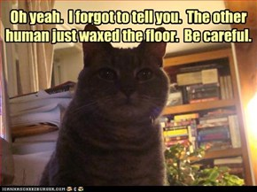 Oh yeah.  I forgot to tell you.  The other  human just waxed the floor.  Be careful.