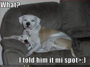 What?  I told him it mi spot>:)