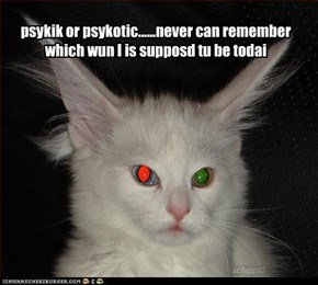 psykik or psykotic......never can remember which wun I is supposd tu be todai