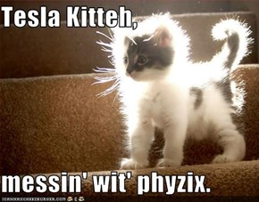 Tesla Kitteh,  messin' wit' phyzix.