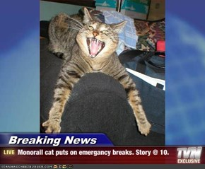Breaking News - Monorail cat puts on emergancy breaks. Story @ 10.