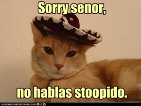 Sorry senor,     no hablas stoopido.