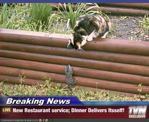Breaking News - New Restaurant service; Dinner Delivers Itsself!