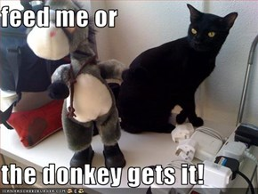 feed me or  the donkey gets it!