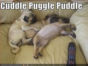 Cuddle Puggle Puddle