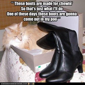 ** These boots are made for chewin' So that's just what I'll do One of these days these boots are gonna  come out in my poo **