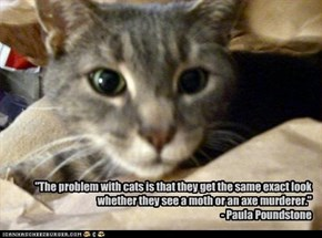 """The problem with cats is that they get the same exact look whether they see a moth or an axe murderer.""  - Paula Poundstone"