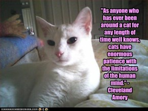"""As anyone who has ever been around a cat for any length of time well knows, cats have enormous patience with the limitations of the human mind."" - Cleveland Amory"