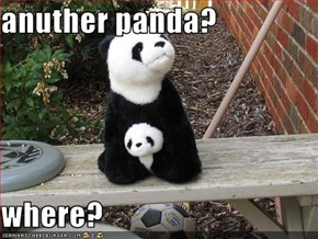 anuther panda?  where?