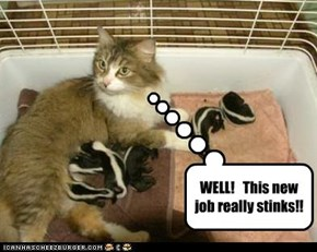 WELL!   This new job really stinks!!