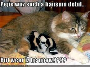 Pepe wuz such a hansum debil...  But wear iz he noaw????