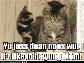 Teen Agnst Kitteh spouts the wisdom of the ages