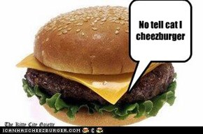 No tell cat I cheezburger