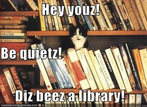 Hey youz! Be quietz! Diz beez a library!