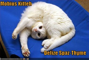 Mobius Kitteh  Defize Spaz-Thyme