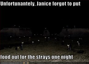 Unfortunantely, Janice forgot to put   food out for the strays one night