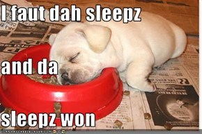 I faut dah sleepz and da sleepz won