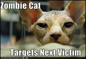 Zombie Cat  Targets Next Victim