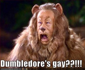 Dumbledore's gay??!!!