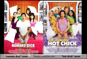 """namaku dick"" cover Totally Looks Like ""hot chick"" cover"