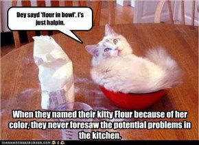 When they named their kitty Flour because of her color, they never foresaw the potential problems in the kitchen.