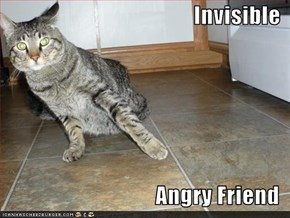 Invisible  Angry Friend