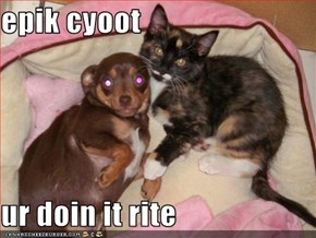 epik cyoot  ur doin it rite