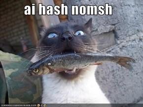 ai hash nomsh