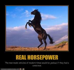REAL HORSEPOWER