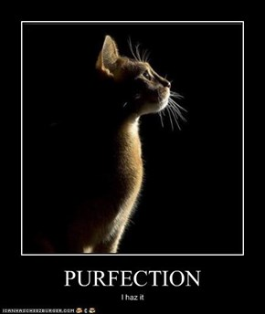 PURFECTION