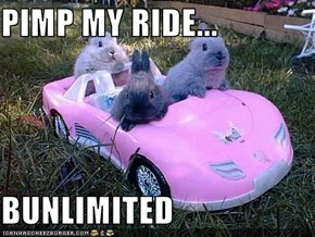PIMP MY RIDE...  BUNLIMITED