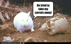 He tried to take my carrots away!