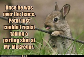Once he was over the fence, Peter just couldn't resist taking a parting shot at  Mr. McGregor.